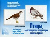 """Игра """"птицы, обитающие на территории нашей страны"""", Весна-Дизайн"""