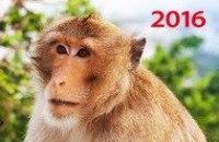 Символ года. вид 2. календарь настенный квартальный трехблочный на 2016 год