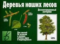 """Игра """"деревья наших лесов"""", Весна-Дизайн"""