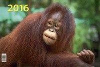 Символ года. вид 2. календарь настенный квартальный трёхблочный на 2016 год