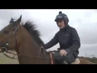 Прыжок на лошади через движущийся автомобиль. Супер!