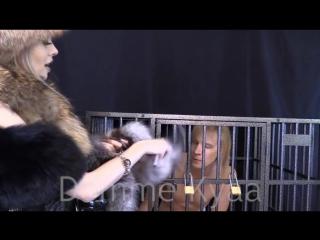 Fur Femdom Free Close-Up  Femdom Porn Video - xHamster