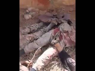 Сирия. Кадры разгрома боевиков ИГИЛ в провинции Алеппо. 18+
