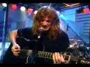 Megadeth - She Wolf (unplugged)