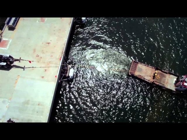 Chevron Delos Ultimate Tug Of War