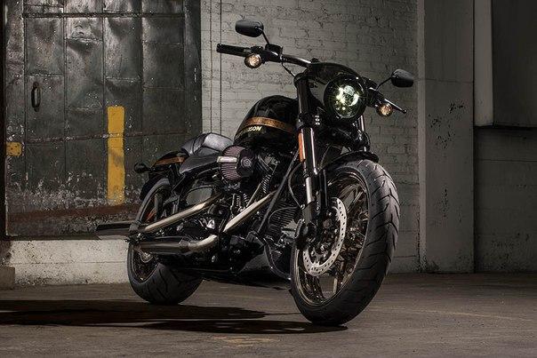 Harley-Davidson представил фабричный кастом