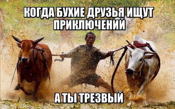http://cs627918.vk.me/v627918259/28686/k4tO38ijXJo.jpg