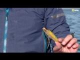 Рыбачьте с нами / Зимой со спинингом на лиманах. Часть 1. Алексей Шанин