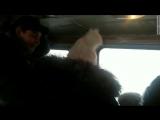 Трагедия на трассе Оренбург – Орск