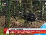 Zoo Lourosa ( Parque Ornitol