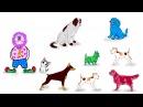 Развивающие видео для детей от 3 до 7 лет, развивающие мультики, 5-й урок