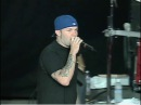 Limp Bizkit Live in Mountain View, CA, 18.06.1999 [Pro Shot]