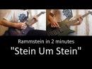 35) Rammstein - Stein Um Stein (guitar bass cover | lesson HD)