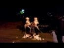 Мумия 5 отжигает танцы аж посыпались )))