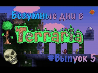 БЕЗУМНЫЕ ДНИ В TERRARIA! #Выпуск 5, убиваем Скелетрона и крышуем данж!
