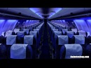Airplane Cabin White Noise Jet Sounds | Great for Sleeping, Studying, Reading Homework | 10 Hours