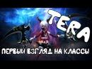 Tera Online обзор классов - Начало