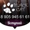 Black Cat | МОДНАЯ ЖЕНСКАЯ ОДЕЖДА | В НАЛИЧИИ
