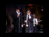 The Blues Brothers - Soul man (11-18-1978)