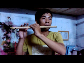 Chim trang mo coi _ Ngau hung troi mua _ Nha Trang