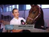 В столице прошла выставка породистых лошадей