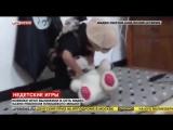 Малыш из ИГИЛ, подражая палачам, обезглавил плюшевого мишку.
