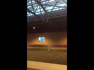 Horse fail👅👍🏼