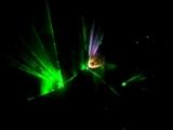 лазерное шоу Чебаркуль