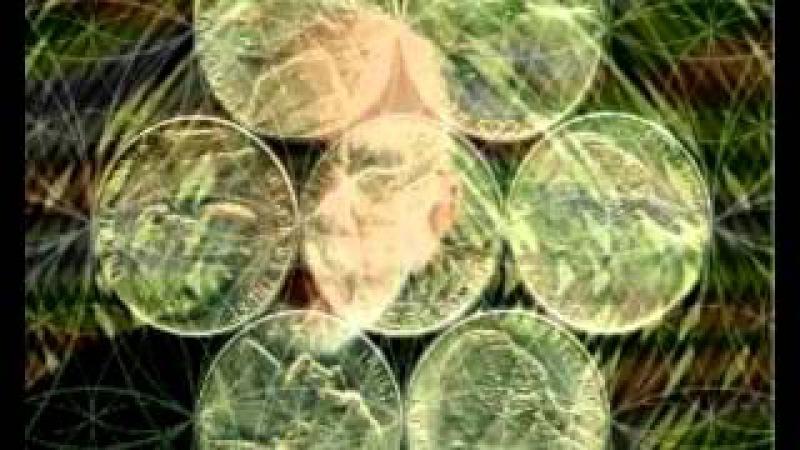 Сакральная Геометрия: Семь монеток (1)
