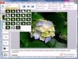 Microsoft® Office 2010 - Работа с картинками для презентаций