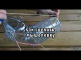 Как сделать мышеловку своими руками из пластиковой бутылки