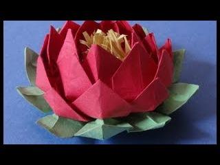 How to make 20 petal lotus with stamen( variation of origami lotus)