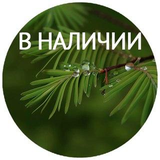 Вулкан Игровые Автоматы Беларуси