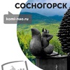 Сосногорск.Komi-nao.ru