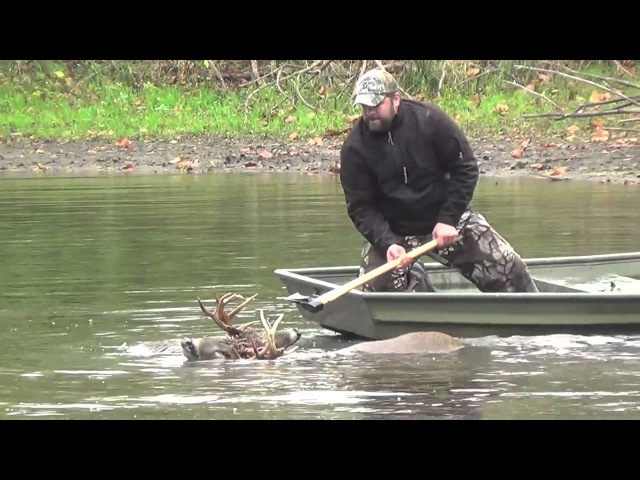 Veterinarian and his Son rescue a 10 Point Buck