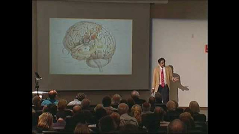 Neurology and the Passion for Art