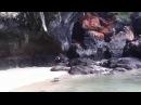 дикий дикий пляж  wild wild beach