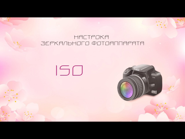 ISO. Настройка зеркального фотоаппарата