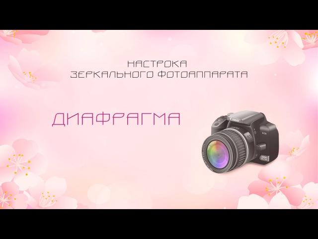 Диафрагма. Настройка зеркального фотоаппарата.