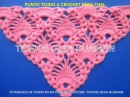 Chal tejido a crochet Piñas combinado con punto espiga video 1