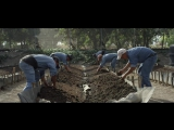 NUTRILITE Живая почва