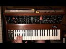 My Minimoog - a little Solo with Delay and Distortion