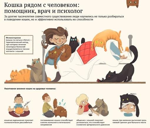 Сочинение по русскому языку на любую тему
