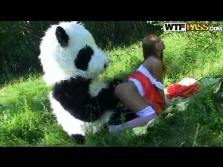 Красная шапочка секс с пандой