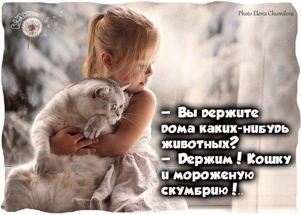 https://pp.vk.me/c627925/v627925075/48da8/PPv0ZuD0mdo.jpg