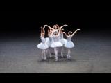 Необычный балет
