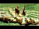 Paul Linda McCartney - Uncle Albert / Admiral Halsey High Quality