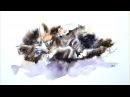 Картина акварелью Котёнок