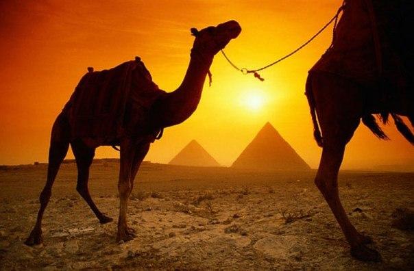 U4bYTBOtLig Египет из Москвы 03.06.15 на 7дней 4* все включено за 15600 р.