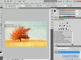 Обзор Adobe® Photoshop® CS5 - Инструмент «Штамп»